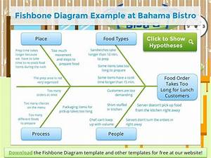 5 Whys  U0026 Fishbone Diagram Training  U0026 Certificate