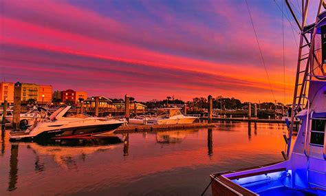 Amelia Island Catamaran Tour by Amelia Island Wartet In 2017 Mit Neuen Attraktionen Auf
