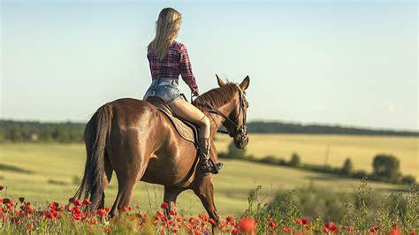 riding horse sydney go places horseback scenery around travel way height
