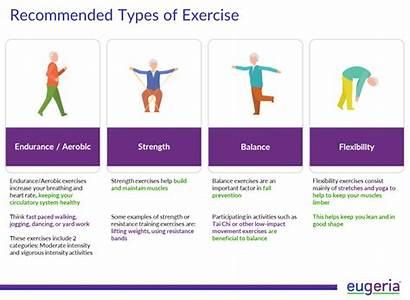 Alzheimer Elderly Exercise Recommended Exercises Study Disease