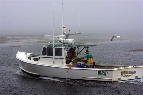 Lobster Boat In Maine by Lobster Boat Optical Illusion In Cape Harbor Maine Flickr
