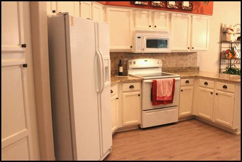 birch kitchen cabinets pros and cons gl kitchen