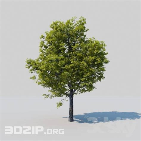 tree bed frame 3d tree model 29 free