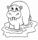 Coloring Hippo Animals sketch template
