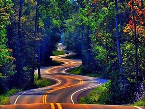 long, , u0026, winding, road