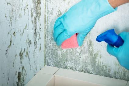 probleme moisissure chambre 6 problèmes de santé causés par la moisissure vulgaris