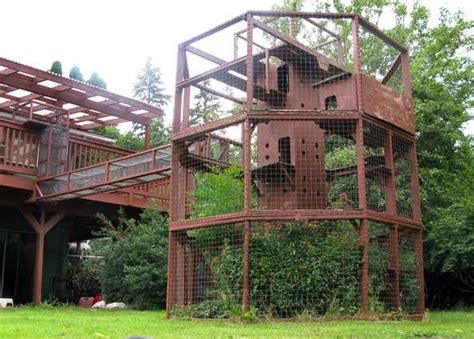 Crazy Home Modifications For Devoted Pet Owners Pets