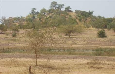 Images d'Afrique - Savane