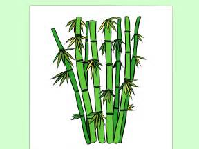 How to Draw Bamboo Drawing