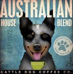Find great deals on ebay for cattle dog. 1000+ images about Australian Cattle dogs on Pinterest | Australian cattle dog, Blue heelers and ...