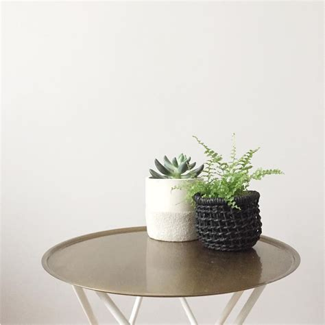 Plante Interieur Ikea by Plante Verte Intrieur Ikea Plantes Au Mur With Plante Au