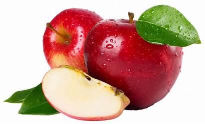 Apples Fruit Digestive System Organic Paradise