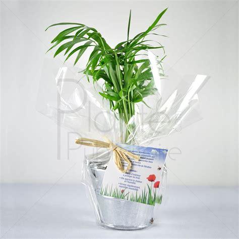plante publicitaire une rentr 233 e sous le signe du v 233 g 233 tal objet publicitaire goodies et