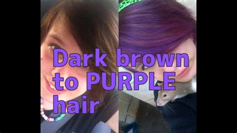 dye black hair purple  bleach wajihairco