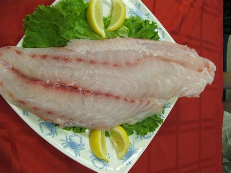 grouper fillet fish fillets recipes fresh filets