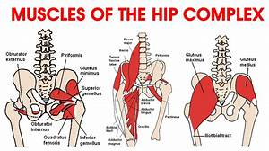 Various Causes Of Hip Pain  And How To Fix It