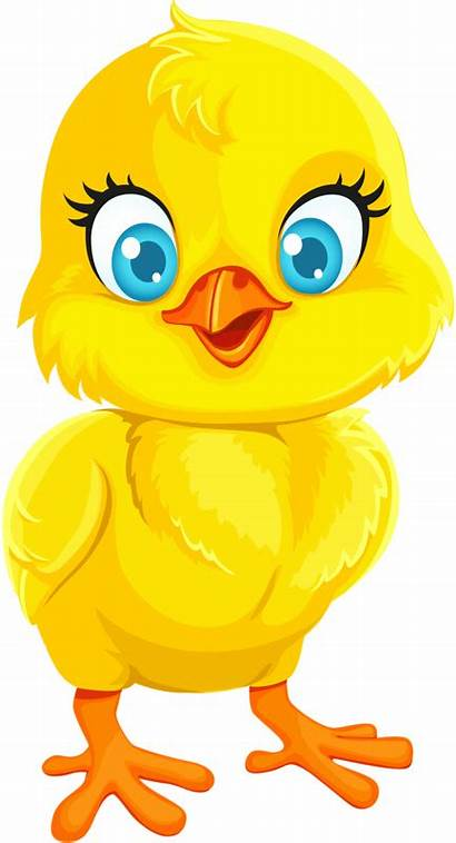 Clipart Easter Clip Transparent Chick Cartoon Quail