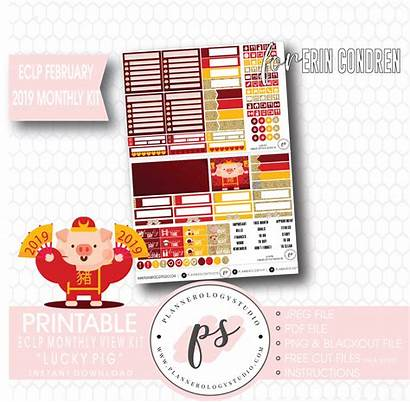 Chinese Pig Lucky Monthly Kit Lunar Stickers