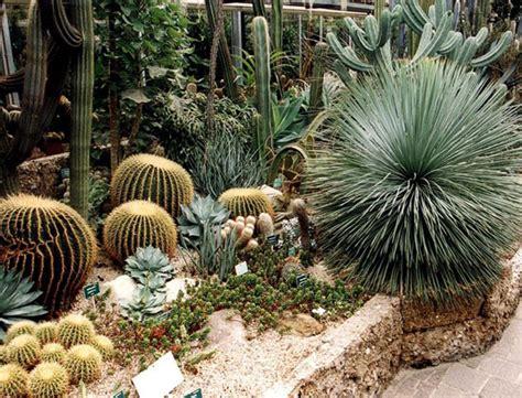 piante spinose da giardino le 5 idee per attrezzare il giardino per i bambini
