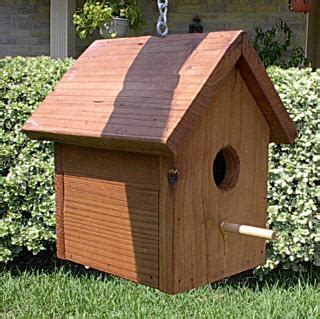 yellow finch bird house plans uniqueqzb