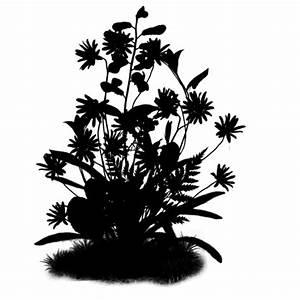 Pot De Fleur Transparent : ombres chinoises fleurs ~ Teatrodelosmanantiales.com Idées de Décoration