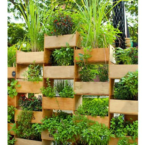 Vertical Garden Cost by Outdoor Vertical Garden At Rs 600 Square Vertical