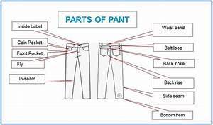 Parts Of Pants  Different Types Of A Jeans Pant Part With