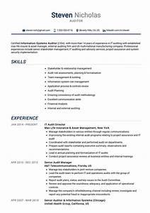 Professional Cv Templates Free Download Auditor Resume Example Cv Sample Guide 2020 Resumekraft