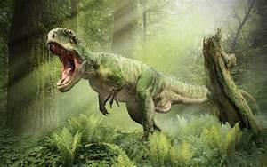 Dinosaur Wallpaper HD   PixelsTalk.Net