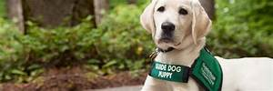 No Bones About It: Guide Dogs for the Blind's Blog: May 2014