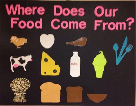 food   food display table food