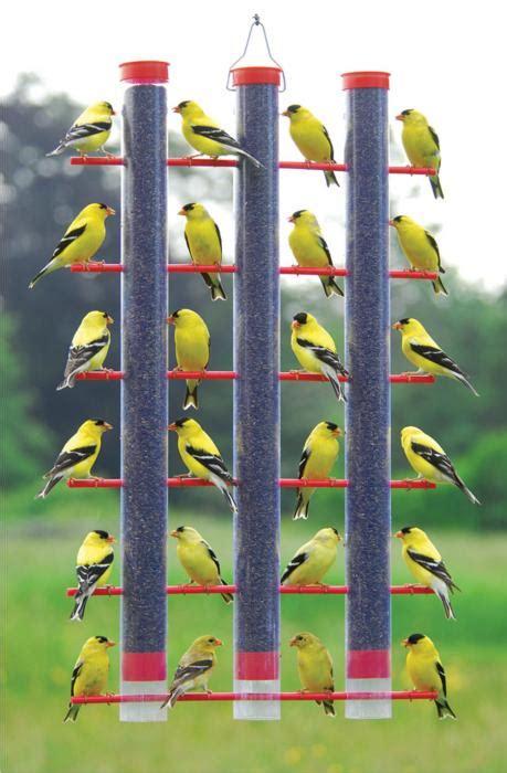 songbird essentials triple tube finch bird feeder