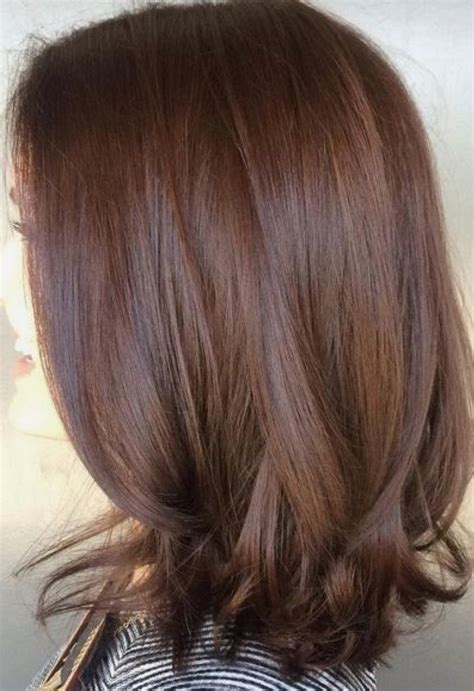 Color For Brown Hair by 25 Best Mocha Brown Hair Ideas On Hair