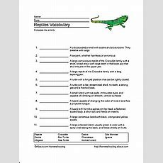 Reptiles Word Search, Vocabulary, Crossword And More