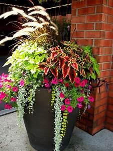 Front, Porch, Flower, Planter, Ideas, 16, Front, Porch, Flower, Planter, Ideas, 16, Design, Ideas, And, Photos