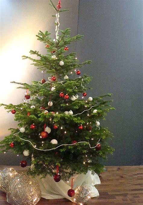 Geschmückte Weihnachtsbäume Christbaum Dekorieren by Bilder Geschm 252 Ckter Weihnachtsbaum Bilder19