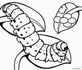 Caterpillar Coloring Butterfly Pages Cocoon Egg Printable Hungry Drawing Cool2bkids Very Leaf Eggs Insect Animal Printables Clipartmag Luthfiannisahay Getcolorings Getdrawings sketch template