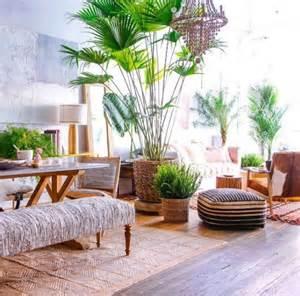 pflanzen wohnzimmer die besten 17 ideen zu wohnzimmer pflanzen auf pflanzenständer wohnzimmer tv und