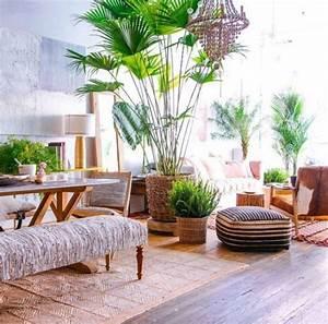 Pflanzen Für Wohnzimmer : die besten 17 ideen zu wohnzimmer pflanzen auf pinterest pflanzenst nder wohnzimmer tv und ~ Markanthonyermac.com Haus und Dekorationen