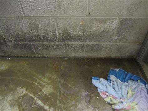 Basement Walls Leak When It Rains  Basement Gallery