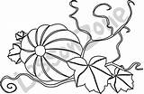 Pumpkin Vine Clipart Sprout Clip Plant Drawing Vines Coloring Pages Clipartpanda Template Terms Clipartmag sketch template