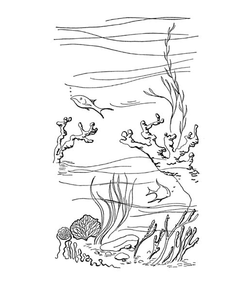 diving coloring pages  childrens printable