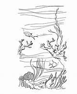 Scuba Coloring Diver Summer Pages Diving Drawing Fun Reef Sheets Ocean Printable Scenes Activity Things Getdrawings Bluebonkers Popular sketch template
