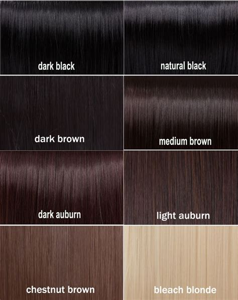 Darkest Shade Of by Best 25 Hair Color Charts Ideas On