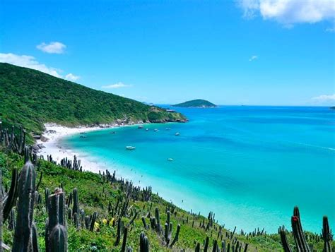 Boat Tour Cabo by Boat Tour To Arraial Do Cabo Rdj4u