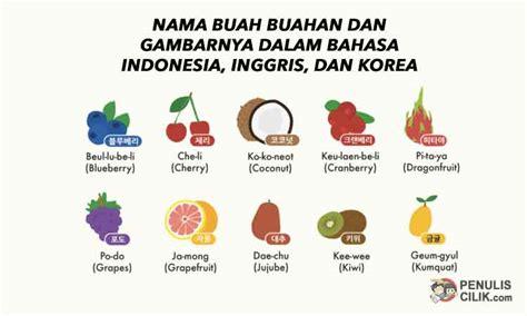 nama buah buahan  gambarnya  bahasa indonesia inggris  korea penulis cilik