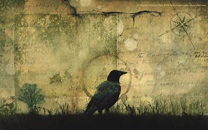 Crow Crows Poe Edgar Allan Wallpapers Key