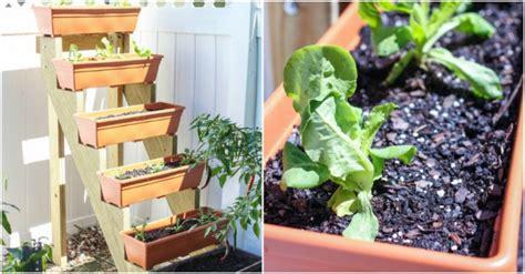 build  vertical herb garden planter