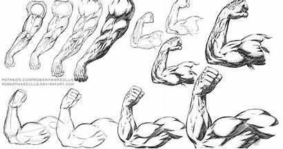 Poses Comic Arm Step Arms Muscular Drawing