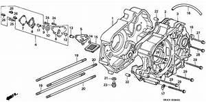 Crankcase  Oil Pump For 1992 Honda C50 C50  Cub